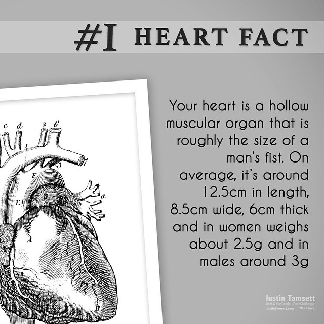 #heart fact #1 could be enough to get you moving before #Christmas.