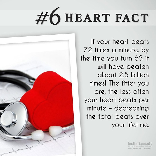 #heartfacts #6. A good reason to #movemore is saving #heart beats. This Christmas #movemore & #feelbetter. #enhance